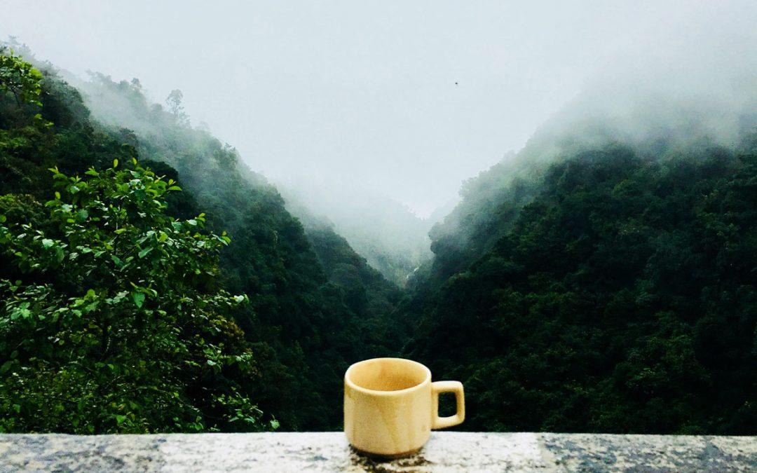 Le café équitable, un réel soutient pour les producteurs de café