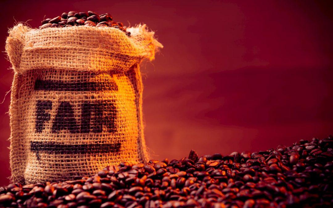 Comment soutenir économiquement les entreprises de commerce équitable ?